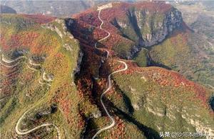 柴关乡鸡冠山-红叶秋景