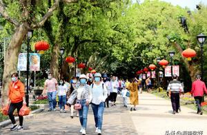 """大年初五:春节""""犇""""游海口 免税购物人气足"""