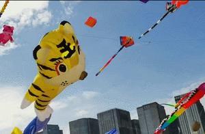 今日上午,厦门国际风筝节已圆满闭幕!期待明年再见
