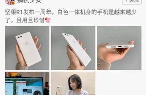 锤粉欢呼!罗永浩亲自允诺:我还会做手机给你们!