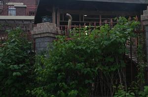 哈尔滨市民举报松北区世茂蓝屿小区,多户别墅私自扩院,公共绿地圈进自家