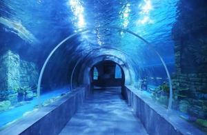 幻太奇海洋馆游玩攻略