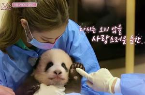 央视批评韩星违规接触熊猫后,YG终发声明,却被指通篇推卸责任