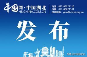 """武汉市长热线:""""低风险地区返汉人员要持核酸阴性证明""""政策暂未执行"""