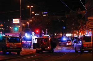"""美情报公司:""""圣战分子""""宣称为维也纳袭击负责,ISIS""""很高兴"""""""
