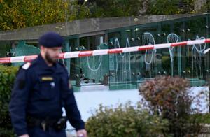 """维也纳恐袭者曾想加入""""伊斯兰国"""""""