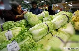 """猪肉降下来了,大葱、白菜又涨价了?白菜再不是""""白菜价"""""""