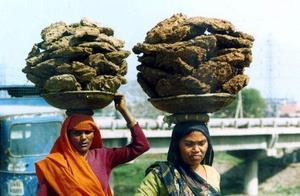 """想靠牛粪发家致富?印度若不摆脱三大制约,""""大国梦""""或永远没戏"""