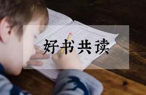 一本书让孩子发现,数学原来这么好玩