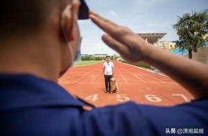 """9岁退伍搜救犬""""图图""""被第一任训导员领养,""""这么多年没养狗,就等它呢"""""""