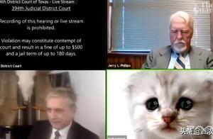 律师开着猫头滤镜上庭