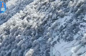 宝鸡气象紧急发布!雨+雪、零下8℃…