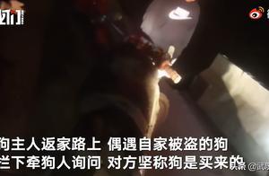 ICU重症监护病房爬满老鼠,医院:已安装捕鼠器抓到50只
