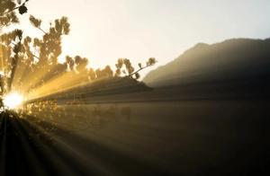 """摄影是一门用""""光""""的艺术,用好光很重要"""