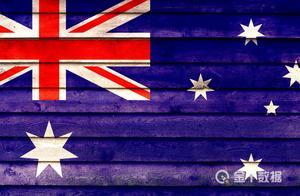 94%出口至华,澳大利亚龙虾遭遇清关延迟:数吨滞留中国机场
