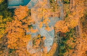 一入秋,这10个城市就美的让人心动