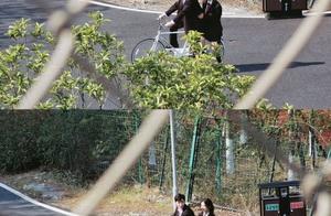 杨超越侯明昊新综艺路透,网友直呼让他们拍一部电视剧!画面太美