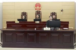 中国工程院撤销李宁院士称号