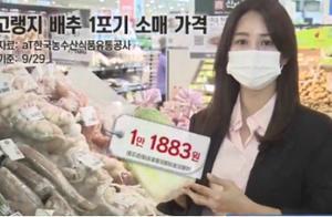 大白菜一颗62元!韩国主妇急了,表示要腌泡菜不如去外面买现成的