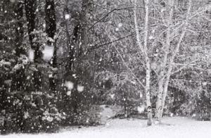 你要的兰州雪景 已安排!