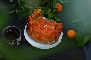 为什么说阳澄湖的蟹,是中国的顶级食材