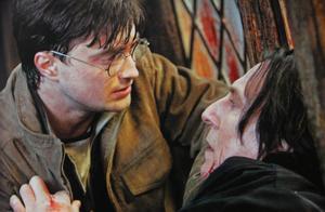《哈利·波特》是如何影响一代读者的?