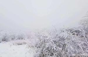 陕西发布94个预警,多地降雪!全西安人盼望的雪,来了