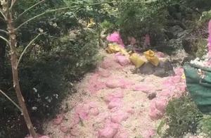 河南货车侧翻致8死11伤,死者家属发声:该地曾多次发生事故!村民系主动帮忙捡蒜