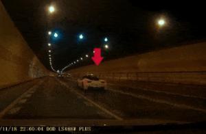 半夜开法拉利、野马在隧道内飙车 杭州三名驾驶员被提起公诉