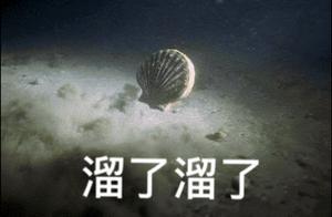 獐子岛原董事长起诉证监会,此前曾申诉 网友:扇贝要