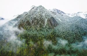 四川美上热搜,入秋后的一场雪美不胜收!放眼望去一片冰雪世界