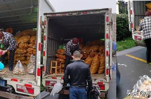 一场暖心土豆消灭战!4吨土豆滞销,小区居民帮吃帮卖