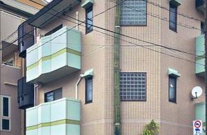 仙人掌爆长3层楼高!顶部惊现奇葩人形 网全看傻:打算逃走?