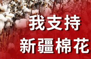 巧夺天工科技:新疆棉花,我支持