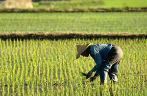 打工越来越难,未来还将面临3大现象,农民工最好趁早做准备