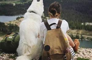 大型遛狗翻车现场,哪有什么岁月静好,只不过是狗子没有拉着你跑
