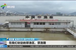 禁渔期非法电鱼 男子电了3条小鱼被刑拘