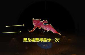 迷你世界:这是黑龙被黑最惨一次!还没见面,百里开外1枪秒杀?
