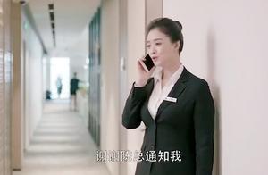 正在开会的樊胜美接到原来公司老板的电话,装可怜还是强啊!