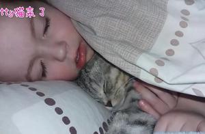 """折耳猫半夜跳到床上""""求抱抱""""!萌娃的反应太暖心了"""