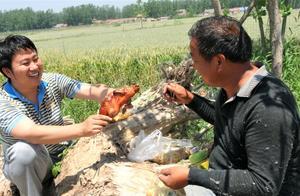 农村家里收油菜,席地而坐吃烤鸭,配两碗凉皮,真馋人
