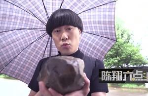 陈翔六点半:蘑菇头随便捡的时候,让闰土成千万富翁,工作也辞了