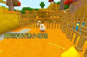 迷你世界:小母鸡真难抓,多亏了粉丝建议,用剩余的饲料引诱小鸡
