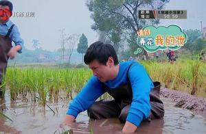 沈腾陪岳母在农村捕鱼,只听说过炸鱼,没听说过抓鱼!