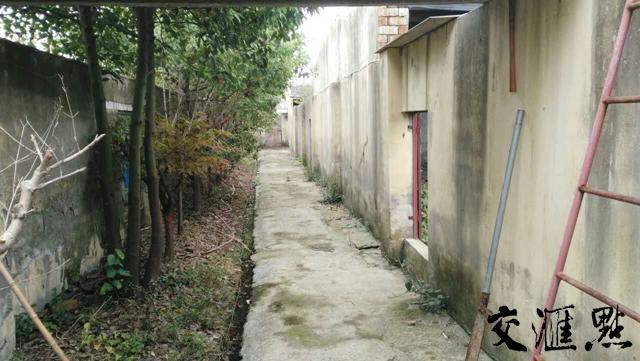 记者探访蛇养殖场:戒备森严如监狱 手续难办利润高