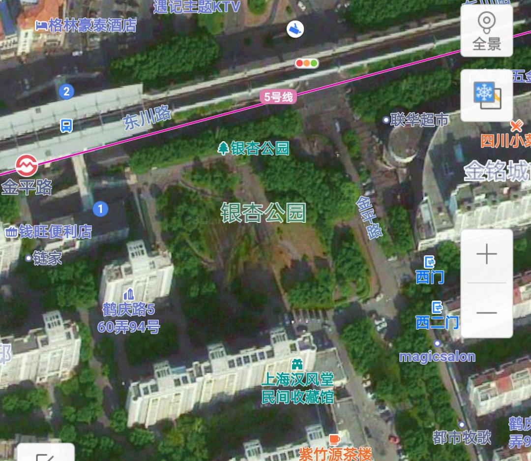 300年后上海老闵行出现百年树精,庇护金平路下子子孙孙