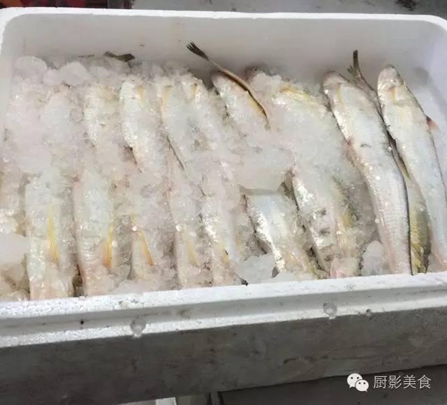 中国江鲜食材宝典 食材宝典 第5张