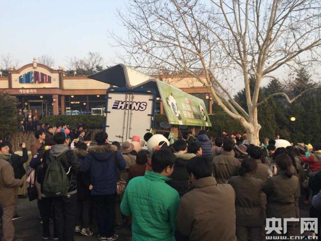 中国两只大熊猫今日抵韩 有望下月与游客见面