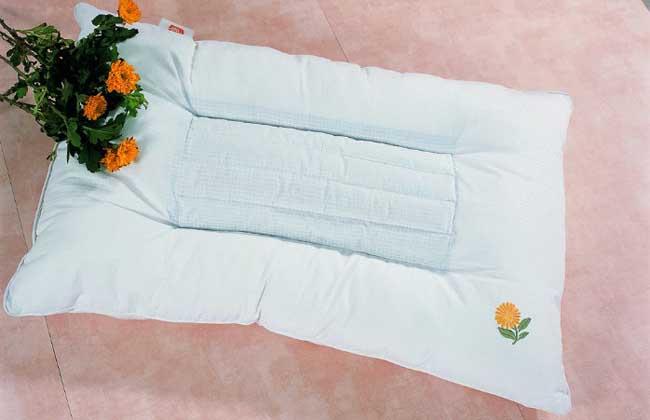 蠶屎做枕頭有什么好處 使用蠶屎枕頭的注意事項是什么