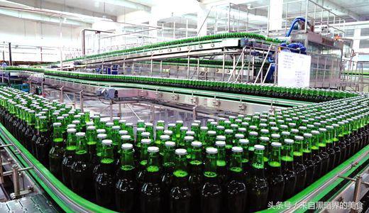 经常喝啤酒的你,最好看看啤酒是如何生产的